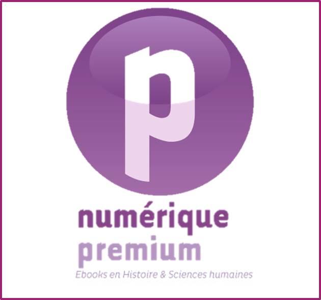 Logo Numérique premium
